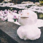 大雪の日は最初から休みでいいんじゃないでしょうか?